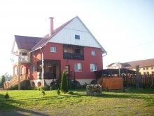 Guesthouse Romania, Alexandra Guesthouse