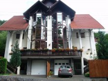 Guesthouse Ocnița, Anette House