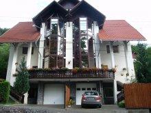 Guesthouse Orheiu Bistriței, Anette House