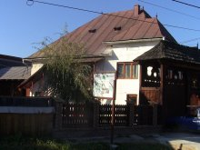 Accommodation Dealu Ștefăniței, Rednic Lenuța Guesthouse