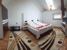 Accommodation Dragomirești, Sára Guesthouse