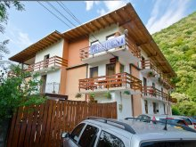 Accommodation Bojia, President B&B