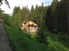 Vilă Valea Cotoarei, Vila 10