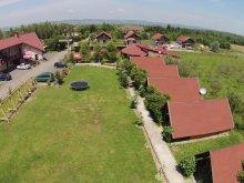 Accommodation Sibiu county, Farm Brandusa