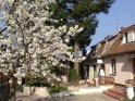 Cazare Sopron Casa de oaspeți Alpesi Trimmel