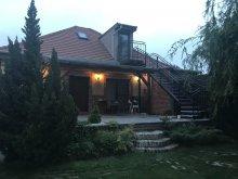 Vacation home Mogyorósbánya, Ráckevei Villa
