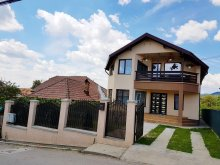 Accommodation Dragoslavele, David Vacation Home