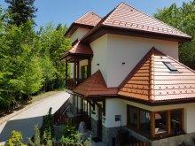 Szállás Trăisteni, Tichet de vacanță, Alfinio Villa