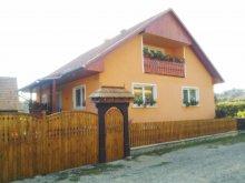 Vendégház Homoróddaróc (Drăușeni), Marika Vendégház