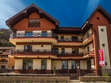 Christmas Package Caraș-Severin county, Magic Guesthouse
