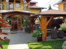 Bed & breakfast Negrilești, Alexandru Breaza Guesthouse