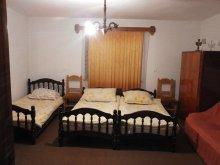 Accommodation Pădureni (Ciurila), Anna Guesthouse