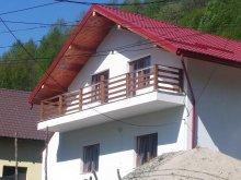 Nyaraló Krassó-Szörény (Caraș-Severin) megye, Casa Alin Nyaraló