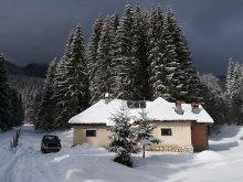 Szállás Drumul Carului, Pietricica Kulcsosház