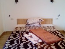 Motel Năvodari, Casa LLB Villa