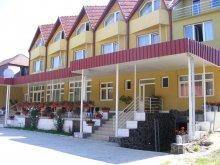 Accommodation Cluj-Napoca, Grandlion B&B