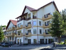Vilă Suseni (Bogați), Vila Marald