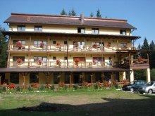 Guesthouse Huzărești, Vila Vank