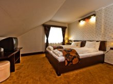 Accommodation Saschiz, Chic Guesthouse