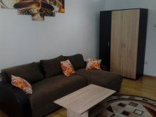 Accommodation Cluj-Napoca, Imobiliar Apartment