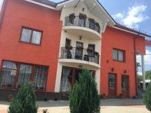 Accommodation Desești, Crinul Alb Guesthouse