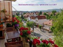 Pachet de festival Transilvania, Apartament CentroCluj Panoramic