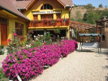 Accommodation Sibiu county, Nu Mă Uita Guesthouse