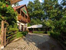 Accommodation Reghin, Vándor Guesthouse