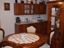 Apartament Mohora, Pensiunea Erdei