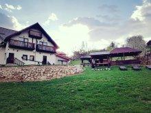 Szilveszteri csomag Nagyszeben (Sibiu), Muntele Craiului Nyaraló
