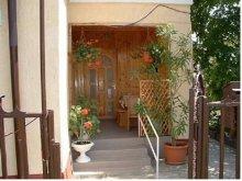 Accommodation Abádszalók, Amigó Guesthouse