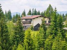 Accommodation Mărișel, Vis Alpin B&B