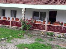 Guesthouse Tureni, Cristian & Marinela Guesthouse
