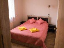 Accommodation Cluj-Napoca, Gamma Apartment