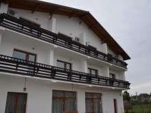 Accommodation Baia Mare, Casa Blanca B&B