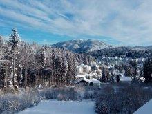 Accommodation Braşov county, Tichet de vacanță, Fantasy Villa