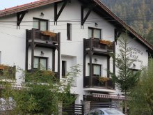 Bed & breakfast Ulmeni, Unio Guesthouse