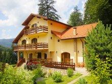 Pensiune Buzăiel, Pensiunea Casa Anca