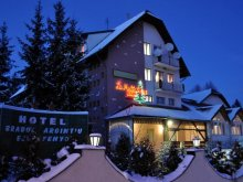 Accommodation Trebeș, Hotel Bradul Argintiu