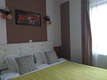 Accommodation Fieni, Casa Traian Guesthouse