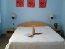 Accommodation Sânmartin, Coca B&B