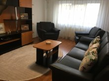 Accommodation Galda de Jos, Criss Apartament