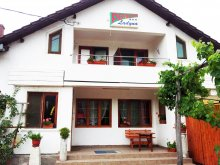 Accommodation Arad county, Ladyna Guesthouse