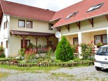 Accommodation Brătila, Bagolyvár Guesthouse