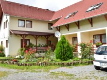 Accommodation Sărata (Nicolae Bălcescu), Bagolyvár Guesthouse