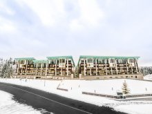 Accommodation Dalnic, Silver Mountain Resort & SPA