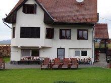 Accommodation Izvoru Mureșului, Fészek Guesthouse