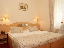 Accommodation Secășeni, Hotel Ferdinand