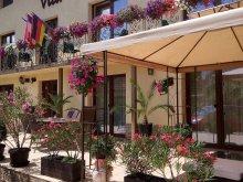 Accommodation Sânmartin, Vila Alma Guesthouse