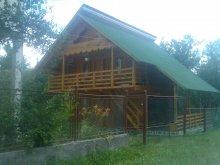 Accommodation Desești, Delia Guesthouse